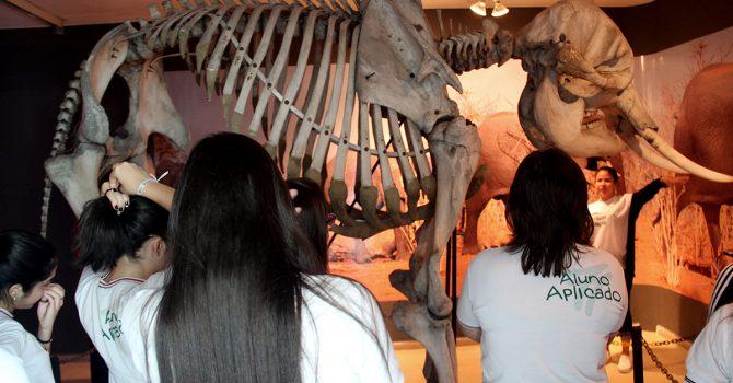 Visita ao Museu Câmara Cascudo